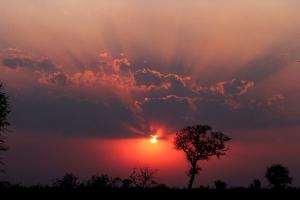 Krugerpark, Zuid-Afrika